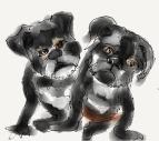 My Grand-dogs